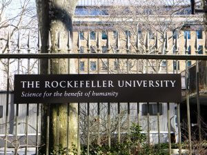 universidad-Rockefeller